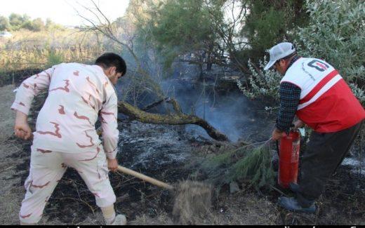 آتش سوزی در جنگل های حاشیه رود ارس در اصلاندوز/تصاویر