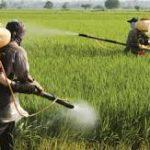 بالابودن ph آب رودخانه ارس سبب تقلیل تاثیر سموم در مبارزه با آفات محصولات کشاورزی شده است