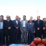 تداوم فرایند توسعه در شرکت ملی پارس با برند زپارس